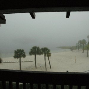 View outside our hotel at the polynesian... Magic kingdom lost in fog